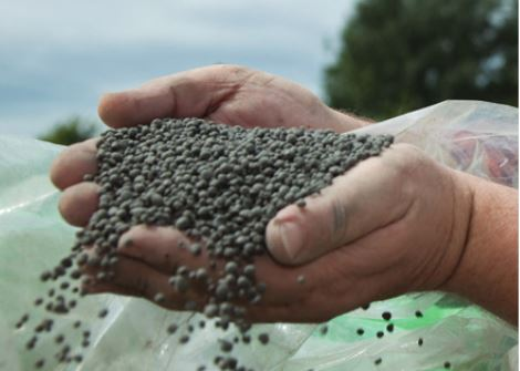 Andritz Belt Dryer Sludge Pellets